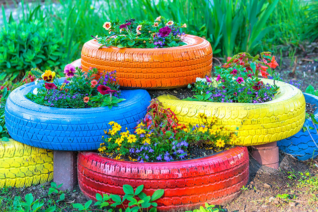 A group of colorful flowers in a garden  Description automatically generated