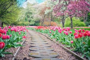A stone and gravel walkway with flowers next to it, one of the garden features that add value to your property.