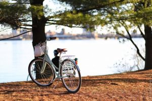 A bicycle near a canal in one of the neighborhoods in Ottawa to raise a family