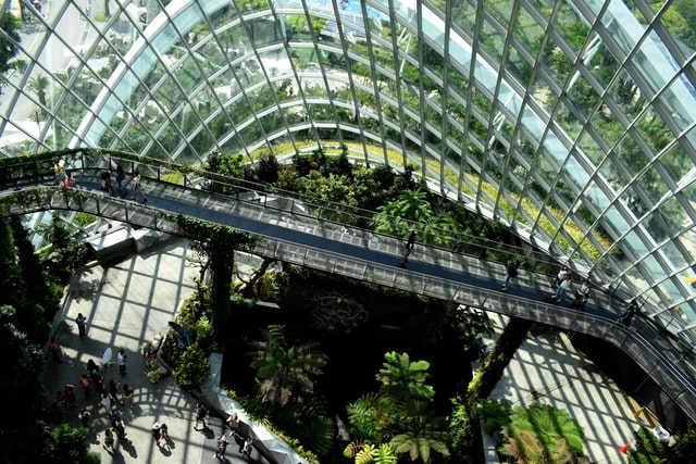 A glass building with plants.